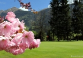 Gastein im Frühling