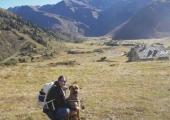 Wandertipps mit Hund Gasteiner Tal | Residenz Gruber