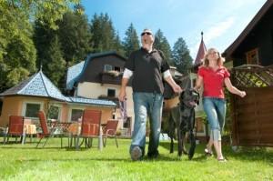 Hundeseminar und Hundetraining