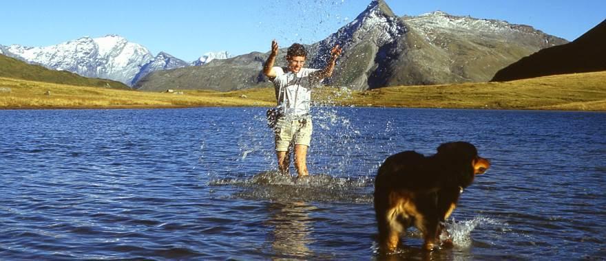 Urlaub mit Hund in Gastein