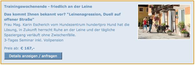 Seminar gegen Leinenaggression