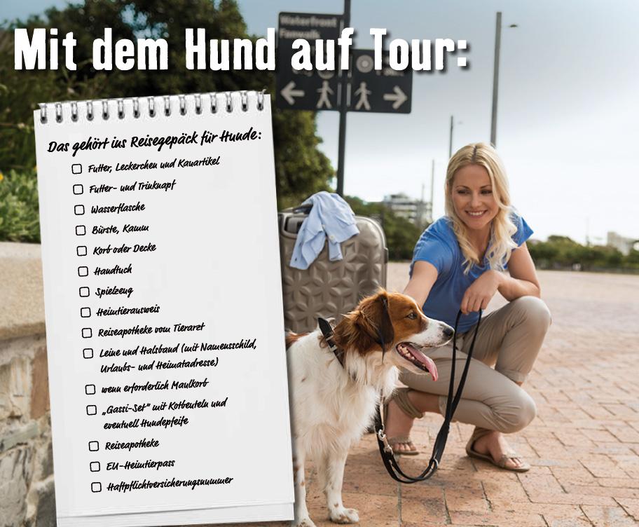 Reisetipps zum Urlaub mit Hund - powered by Freßnapf und Residenz Gruber