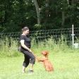 Spiel und Sport Hundeseminare im Urlaub