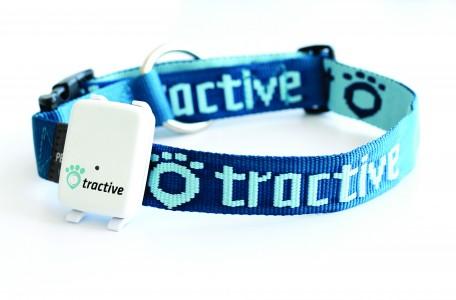 Gutscheincode für Tractive GPS hier abholen