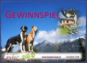 Urlaub mit Hund gewinnen