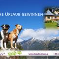 Gewinnspiel Urlaub mit Hund