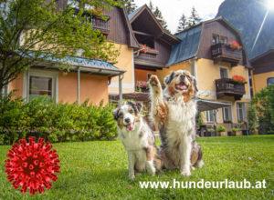 sommerurlaub 2021, urlaub mit hund, Grenzöffnung Österreich