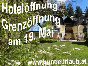 Einreise Österreich ab 19. Mai